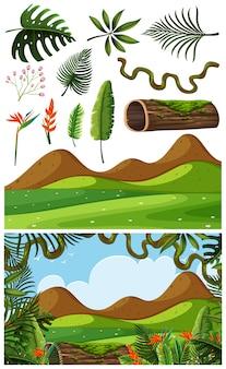 Objetos da natureza e cena