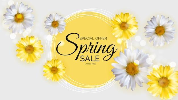 Oferta promocional, cartão de venda de primavera com decoração de plantas, folhas e flores da primavera