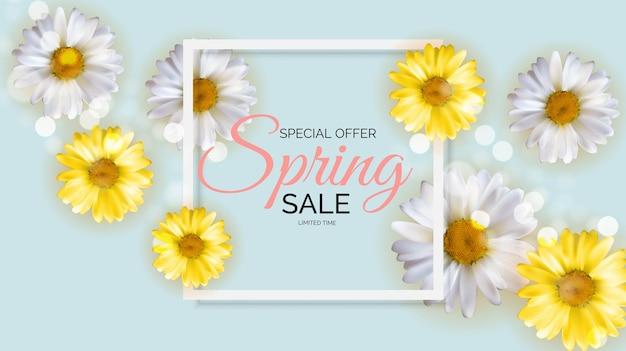 Oferta promocional, temporada de liquidações de primavera com flores de camomila