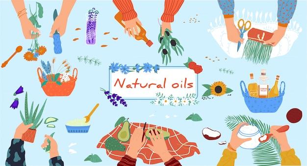 Oficina de óleos naturais, cosméticos artesanais orgânicos de ingredientes ecológicos, mãos de pessoas, ilustração