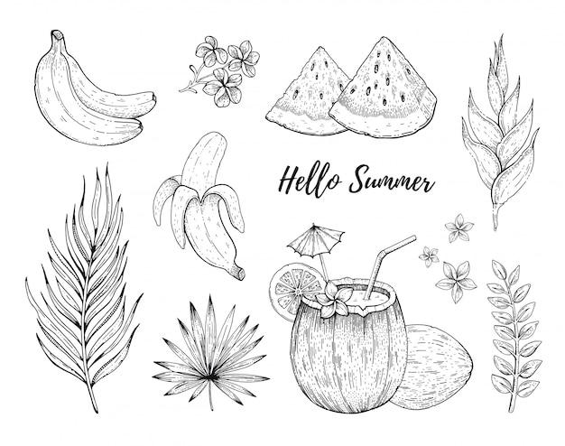 Olá etiquetas tropicais de frutas e flores de verão