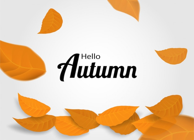 Olá fundo de outono. design com folhas de outono em fundo branco.
