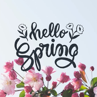 Olá letras de primavera com conceito de foto
