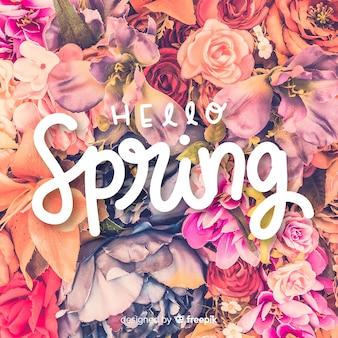Olá letras de primavera com foto