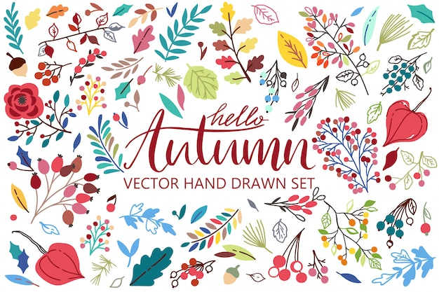 Olá outono com folhas, frutos, flores, bela composição