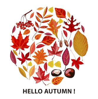 Olá outono, pôster com folhas e folhagens secas