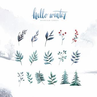 Olá plantas de inverno e flores pintadas por aquarela vector