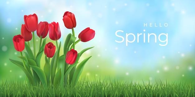 Olá primavera. buquê de tulipas vermelhas.