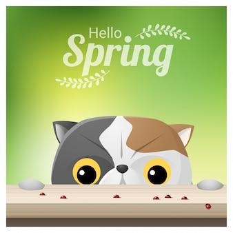 Olá primavera fundo com um gato olhando joaninhas