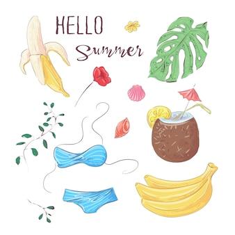 Olá verão. conjunto de frutas tropicais e elementos. vetorial, ilustração, mão, desenho