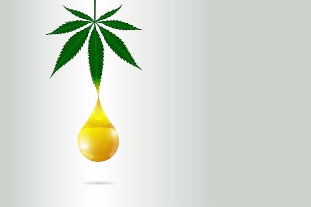 Óleo de cânhamo cbd de cannabis medicinal conceito de pôster extrato de folha de maconha rótulo de produto natural