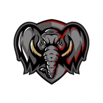 Olhar dianteiro da cabeça do elefante
