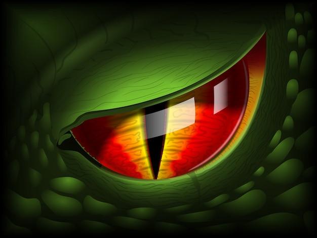 Olho de dragão