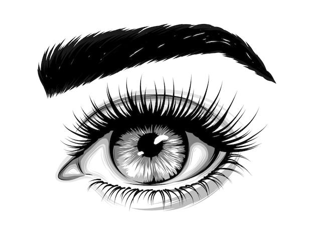 Olho de mulher com sobrancelhas e cílios longos