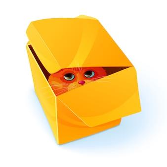 Olho dentro da composição da caixa