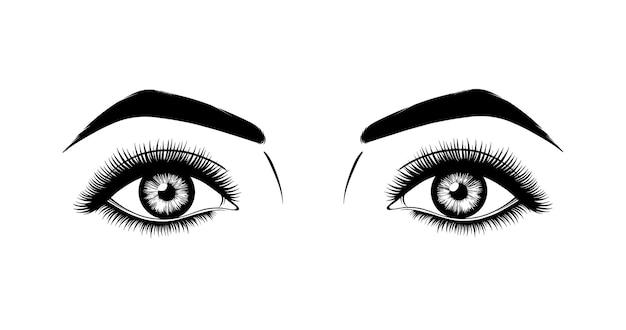 Olhos de mulher com cílios longos preto e branco estilo desenhado à mão