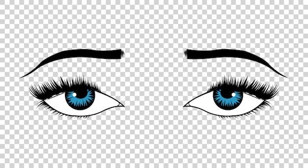 Olhos de vetor. mão desenhada olhos femininos de luxo com sobrancelhas em formato perfeito e cílios grossos. o visual perfeito