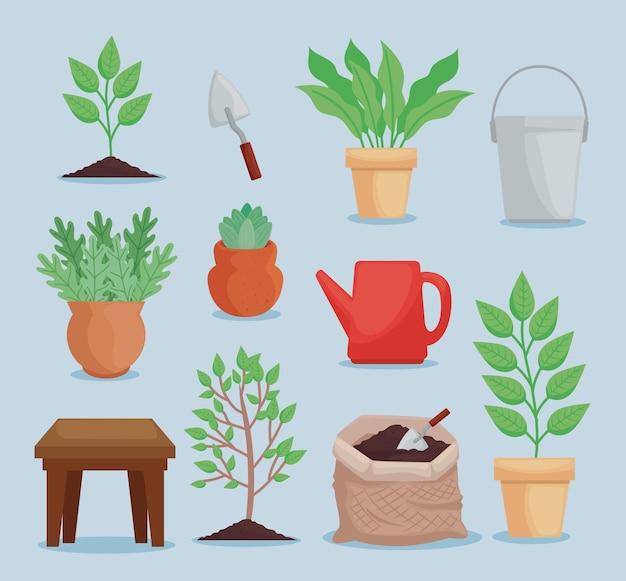 Onze ícones de plantio