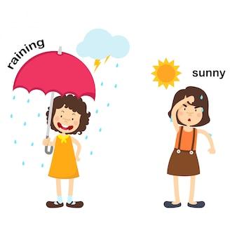 Oposto a chover e ilustração vetorial ensolarado