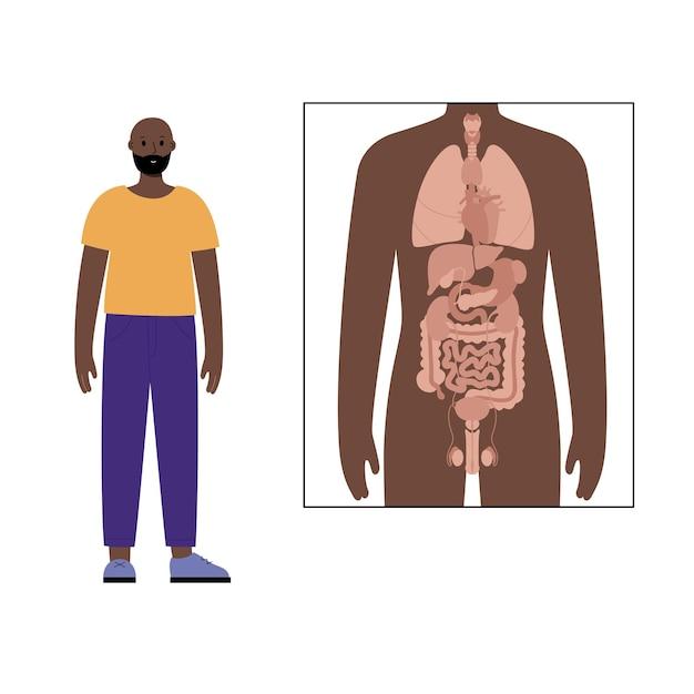 Órgãos internos em pôster anatômico do corpo humano e personagem do homem negro ao lado dele.