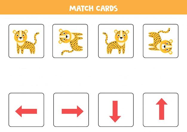 Orientação espacial para crianças. leopardo bonito dos desenhos animados em orientação diferente.