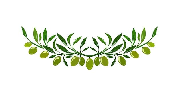 Ornamento de coroa de oliva com folhas verdes frutas frescas orgânica itália padrão natureza fronteira