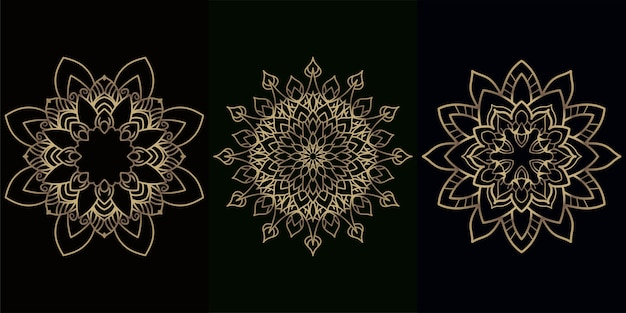 Ornamento de mandala ou coleção de conjunto de fundo de flor.
