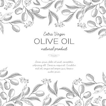 Ornamento elegante superior e horizontal gravando a borda de cachos de oliveira