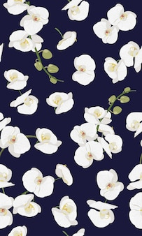 Orquídea branca floral padrão sem emenda
