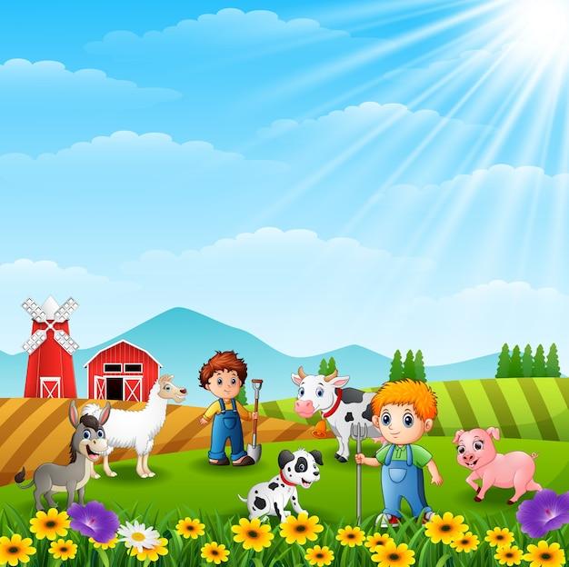 Os agricultores mantendo animais na fazenda