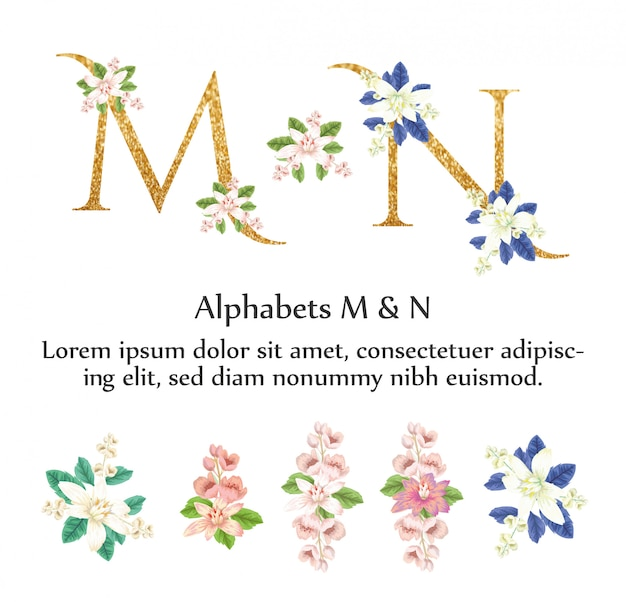 Os alfabetos m & n convidam com flor da aguarela