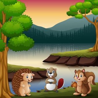 Os animais estão curtindo a natureza no lago