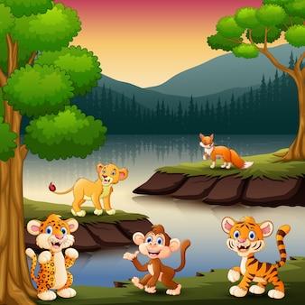 Os animais selvagens estão curtindo a natureza à beira do lago