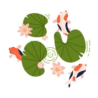 Os peixes koi com listras vermelhas e laranjas nadam sob as folhas de lótus e nenúfares