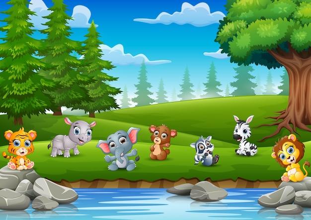 Os pequenos animais estão curtindo a natureza no rio