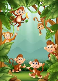 Os pequenos macacos felizes na selva