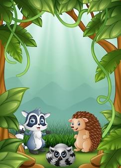 Os pequenos ouriços e guaxinins são felizes na floresta