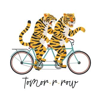 Os tigres montam uma ilustração de bicicleta tandem