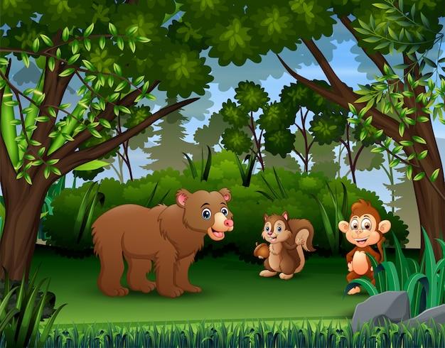Os vários animais na selva