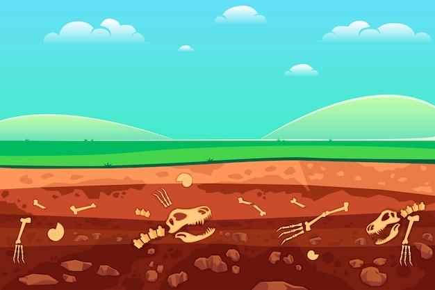 Ossos arqueológicos em camadas de solo.
