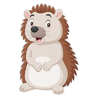 Ouriço bebê de desenho animado isolado no fundo branco