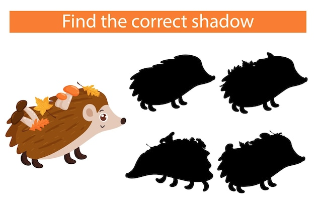 Ouriço dos desenhos animados. encontre a sombra certa. vetor, estilo cartoon.