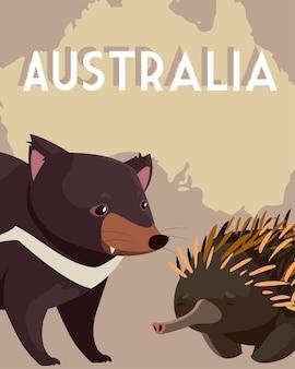 Ouriço e diabo tasmaniano mapa australiano ilustração da vida selvagem animal