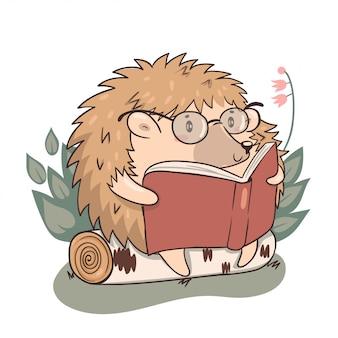 Ouriço lê isolado em um fundo branco. ouriço do personagem kawaii.