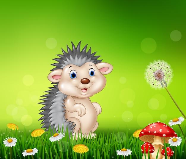 Ouriço pequeno bonito no fundo da grama