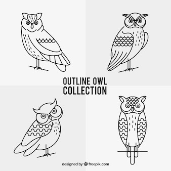 Outline owl pack of four
