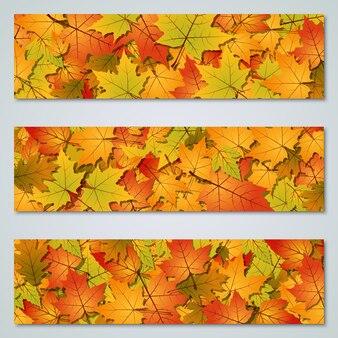 Outono colorido deixa coleção de fundo vector horizontal