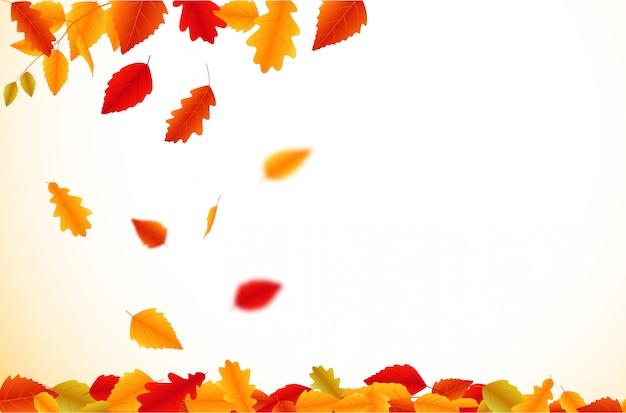 Outono folhas caindo fundo