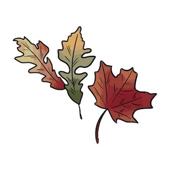 Outono folhas coloridas caídas