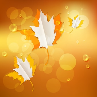 Outono fundo abstrato da natureza